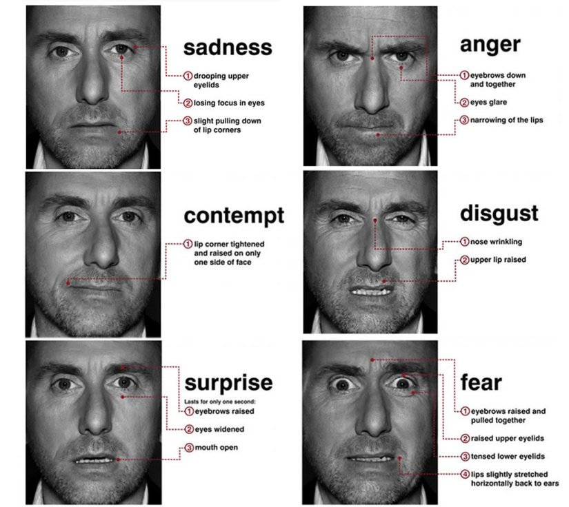 micro_expressions_tim_roth